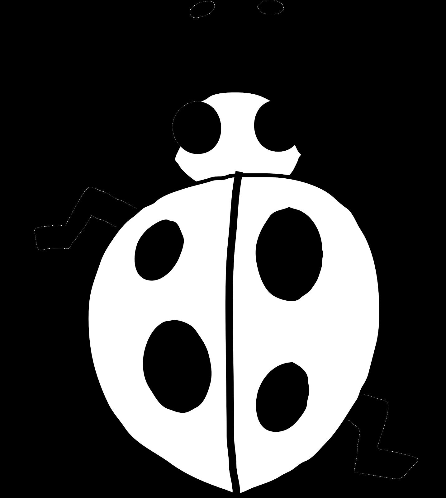 Ladybug Outline Line Drawing Painting Kindergarten