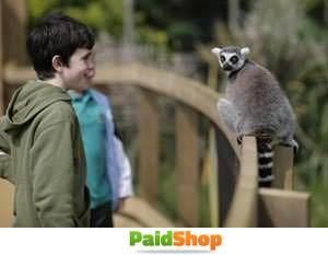 ZSL Whipsnade Zoo Priority Entry Tickets Summer 2014