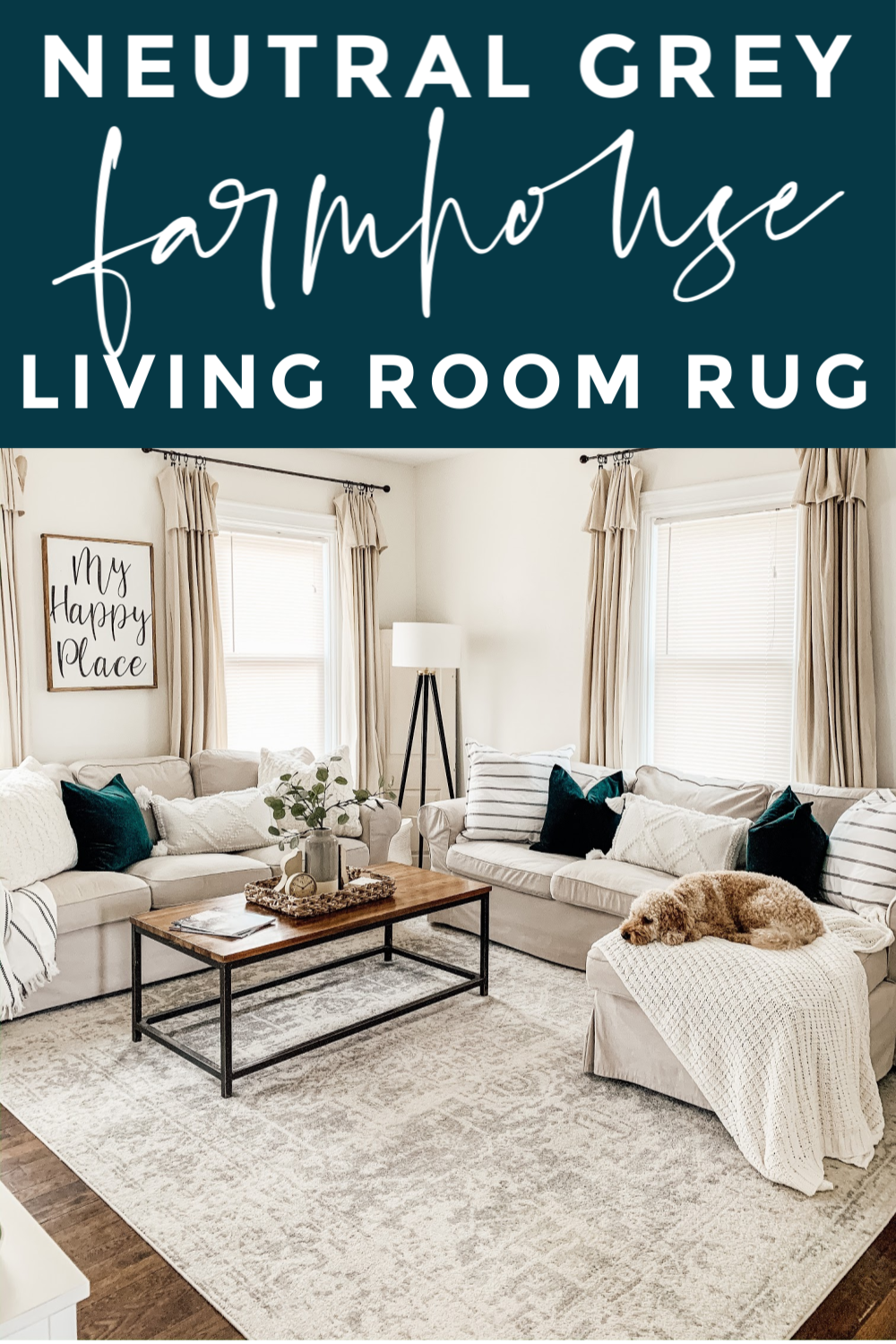 Photo of Neutral Grey Living Room Rug
