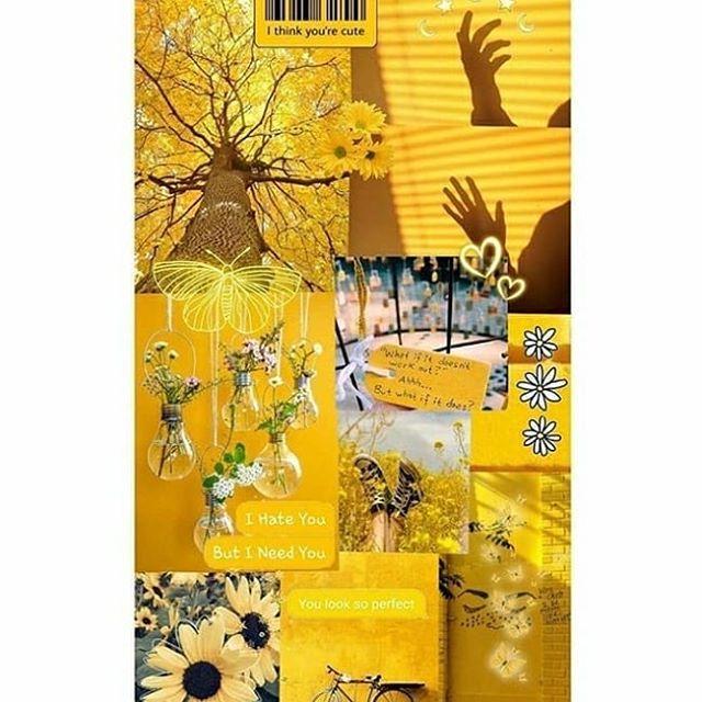 حساب للون الاصفر تابع الحساب Follow Us Clour Yellow Clour Yellow Clour Yellow حساب للون الاصفر تابع الحس Wallpaper Iphone Wallpaper Quotes Love Mail Art
