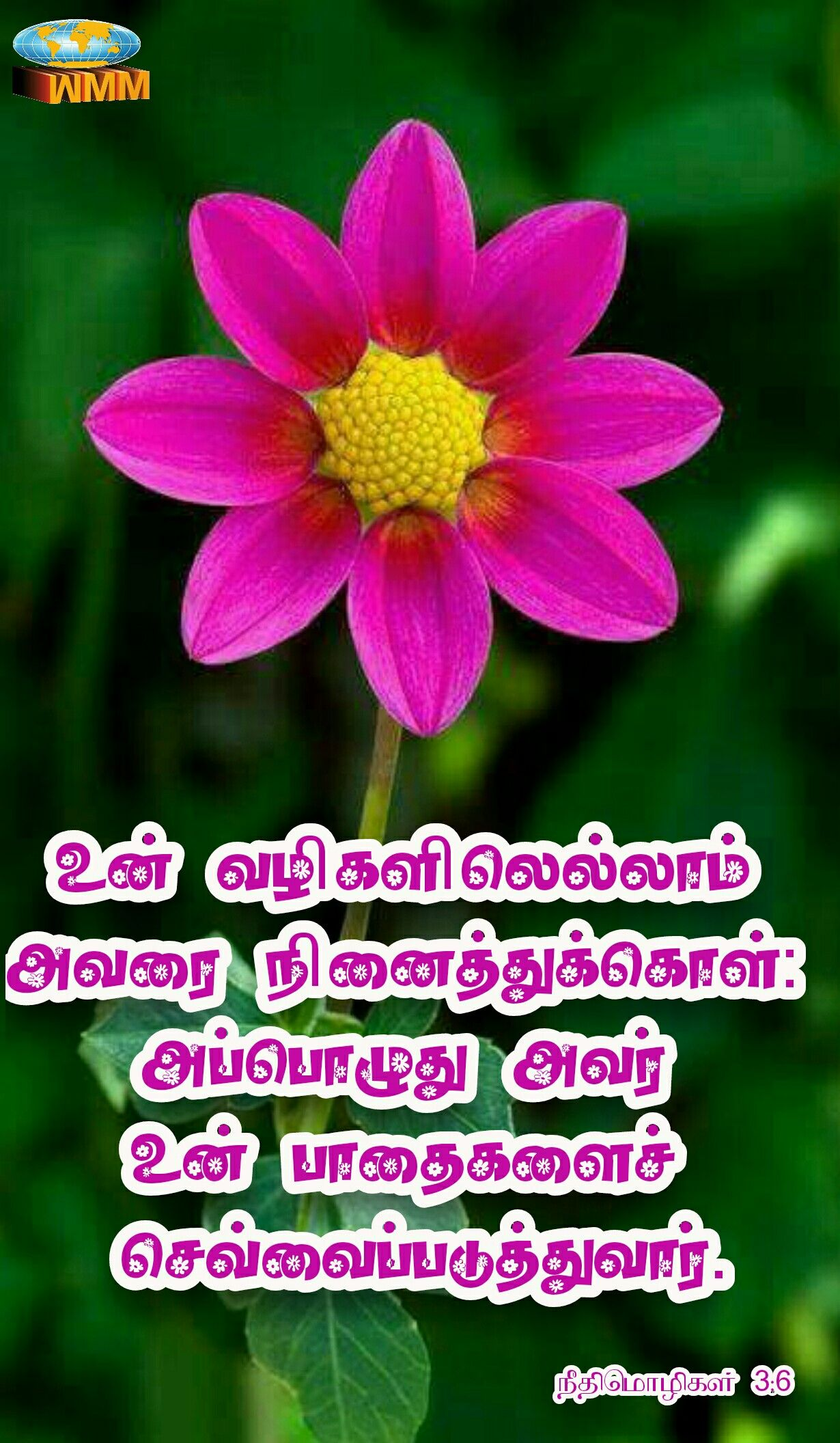 Pin by Charles MSK India on Bible Verse Tamil bible