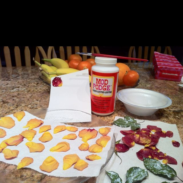 Microwave Flower Petals To Dry Them Then Mod Podge Them To Preserve Them Take Petals From Flowers J How To Preserve Flowers Mod Podge Crafts Flower Petals