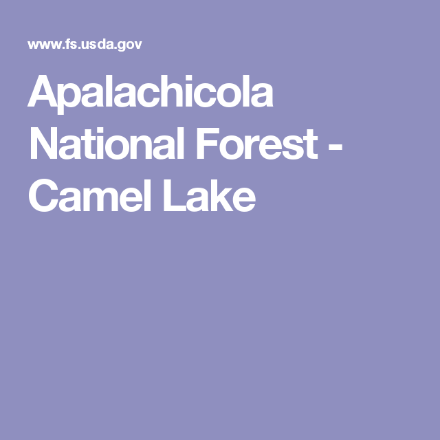 Apalachicola National Forest   Camel Lake