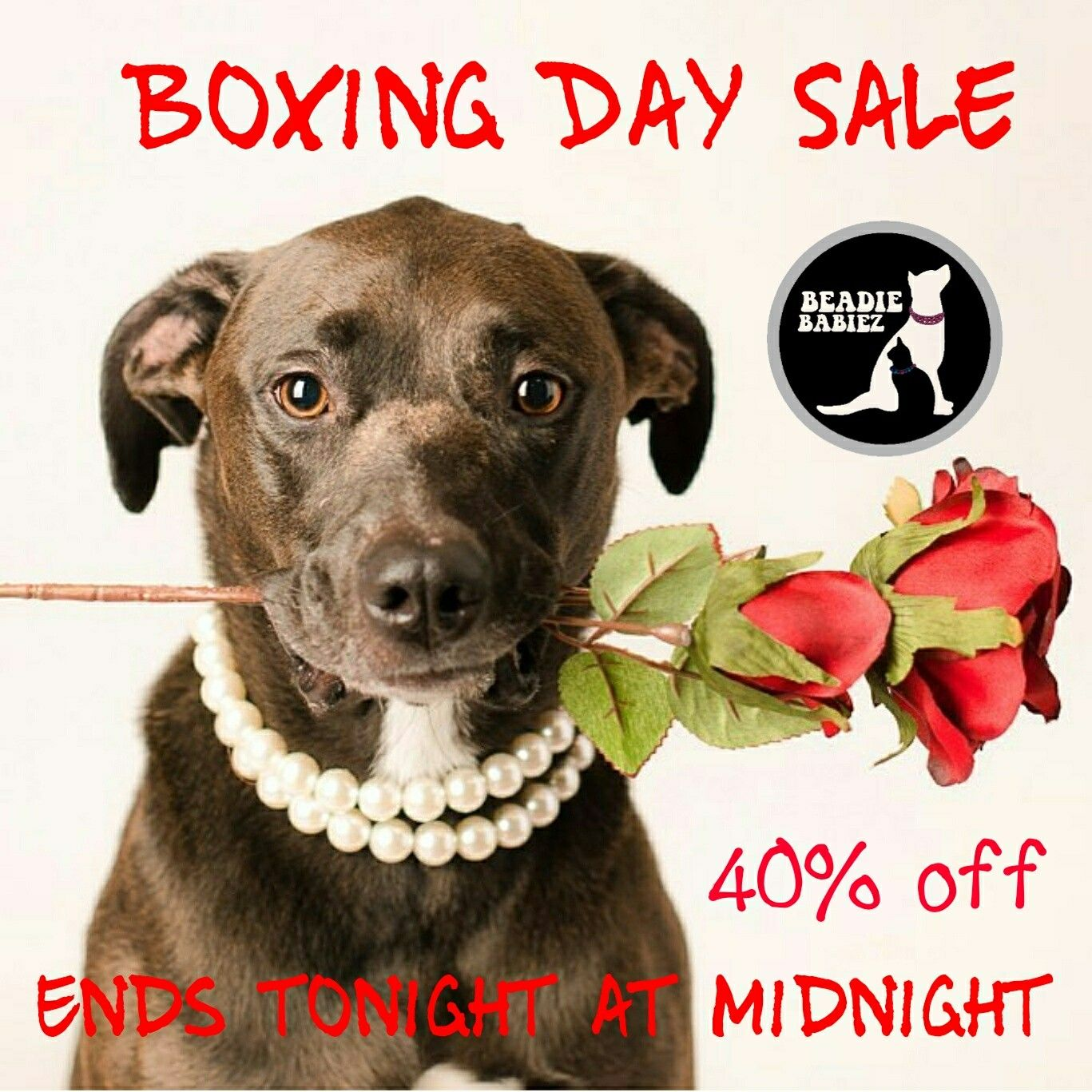 Beadie Babiez Collars Annual Boxing Day Sale Is Back Save 40 Off Your Entire Purchase No Coupon Code Needed Get Your Own Handcraf Handcraft Etsy Etsy Finds