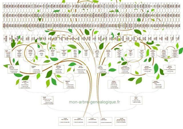 arbre genealogique arbres g n alogiques pinterest arbres g n alogiques mon arbre. Black Bedroom Furniture Sets. Home Design Ideas