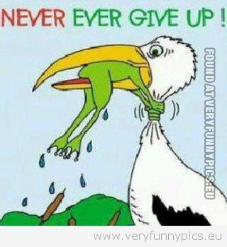 Really Funny Cartoon Quotes | Funny Pictures | quotes ...