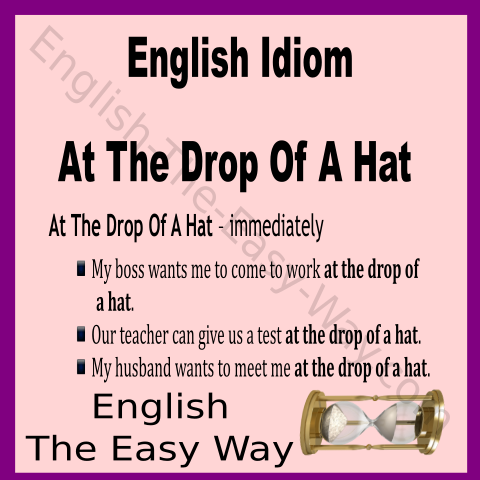 English Lesson I Can Not Meet You 1 At The Drop Of The Hat 2 Now 3 Both Idiom English Idioms English Vocabulary Words Learn English Vocabulary