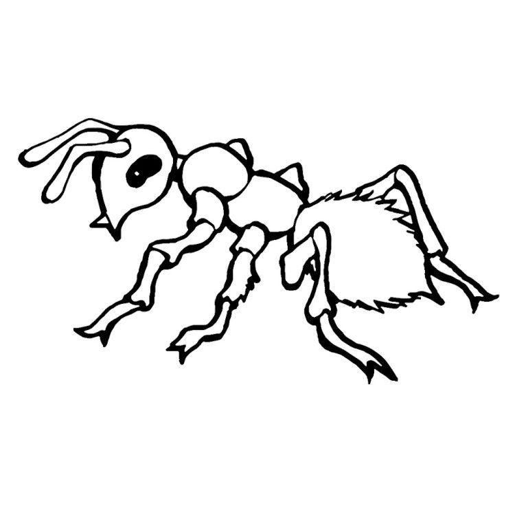 новый муравьи раскраска распечатать так