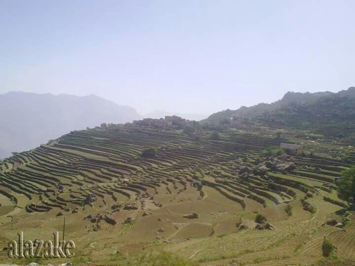 صور من بلادي اليمن المحويت Outdoor Farmland Vineyard