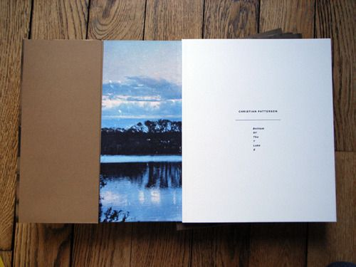 Christian Patterson - Bottom of the Lake Published by TBW Books, 2013