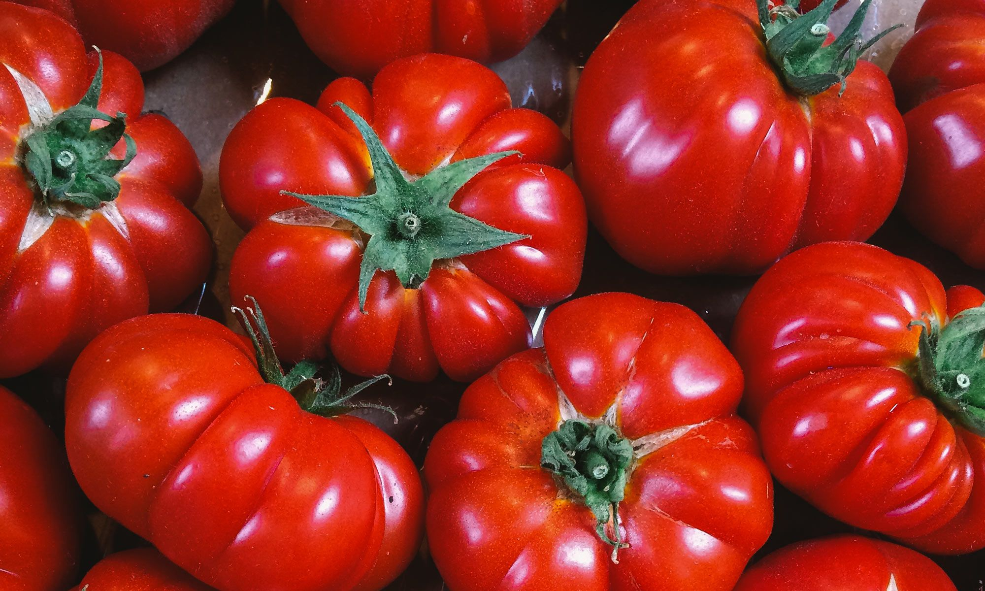 What genetic engineering and organic farming have in common