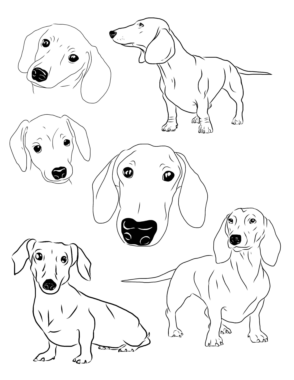 dachshund clipart set of 6 dachshund download printable instant puppy wiener weener weiner dog by archerartanddesign on etsy [ 2318 x 3000 Pixel ]