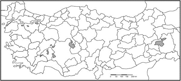 Turkiye Dilsiz Bos Haritalari Harita Haritalar Turkiye