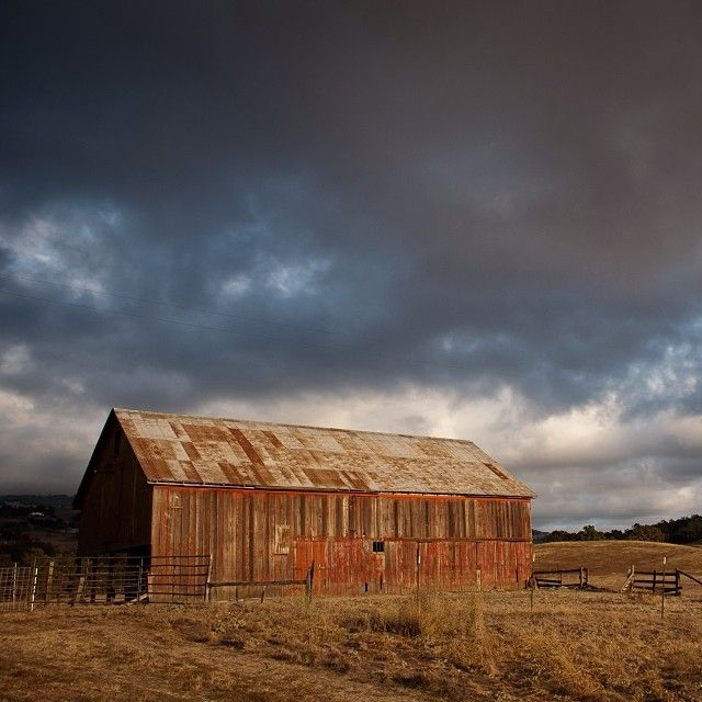 Petaluma Old Barn | Robin Bianchini Sonoma County Real