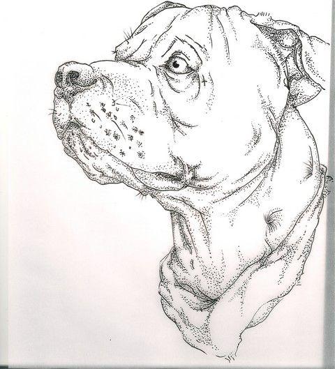 Tattoos By Devlin Dog Tattoos Dog Tattoo Dog Drawing