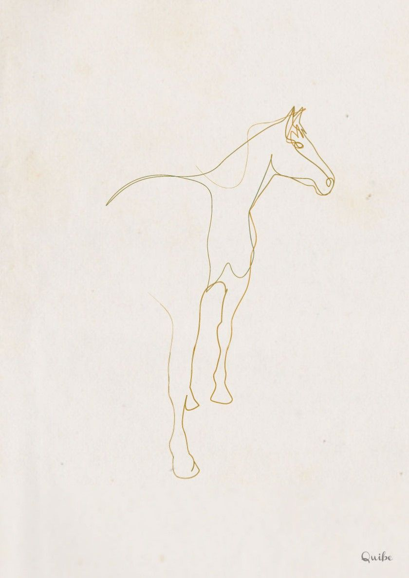 One Line Art Quibe : One line horse again illustration drawing by