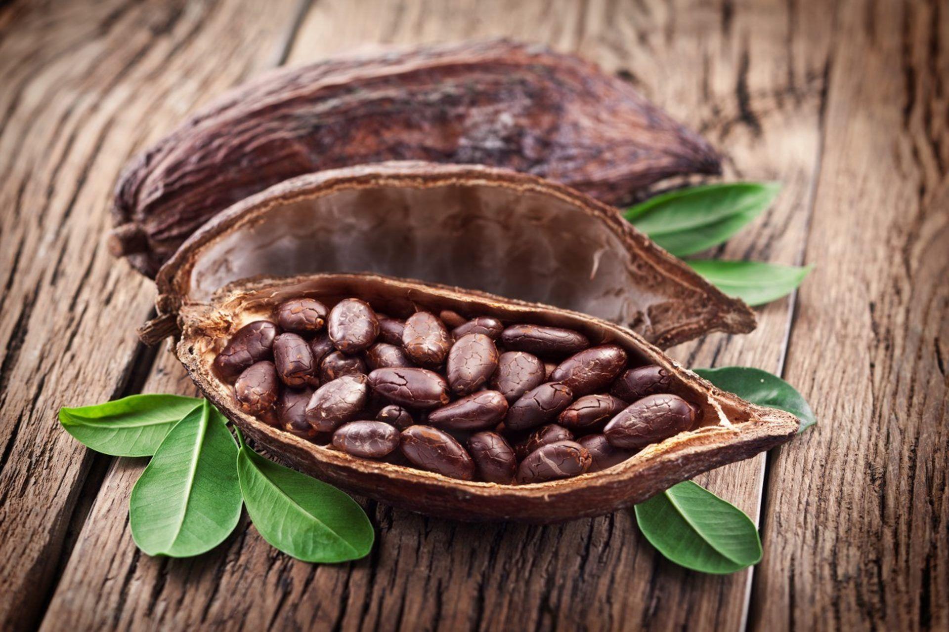 Le Cacao Et Ses Effets Sur La Santé Santé Quotidienne Granos De Cacao Frutas Y Verduras Recetas De Comida