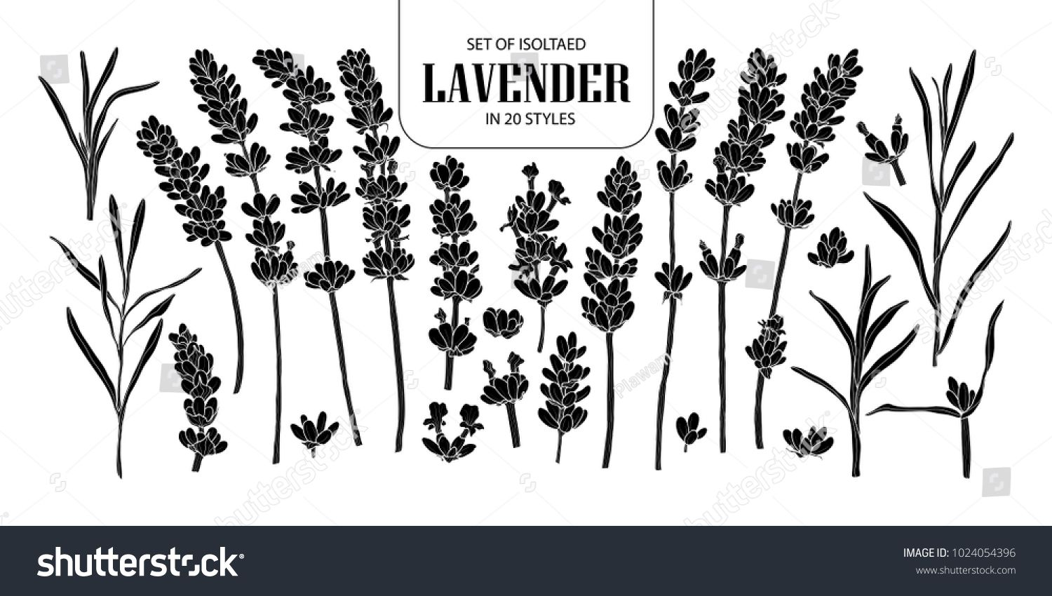 Set Of Isolated Silhouette Lavender In 20 Styles Cute Hand Drawn