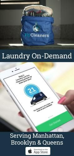 Pin By Adaction Interactive On Flycleaners App Lunch Box Laundry