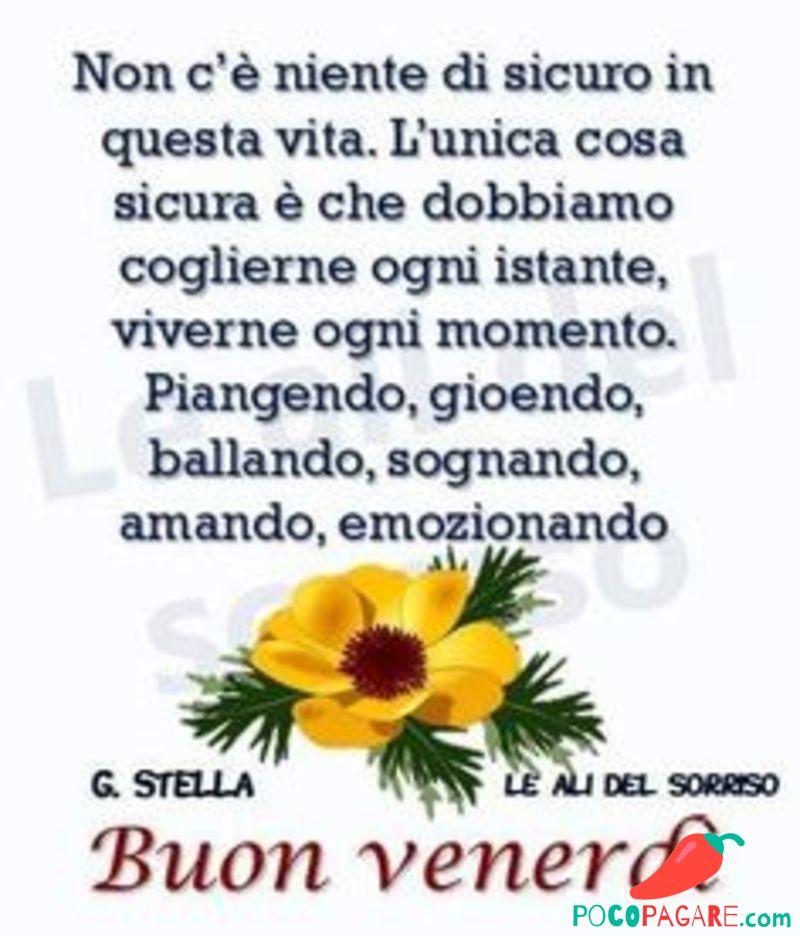 Belle Frasi Da Scaricare E Inviare Facebook Whatsapp Buon Venerdi