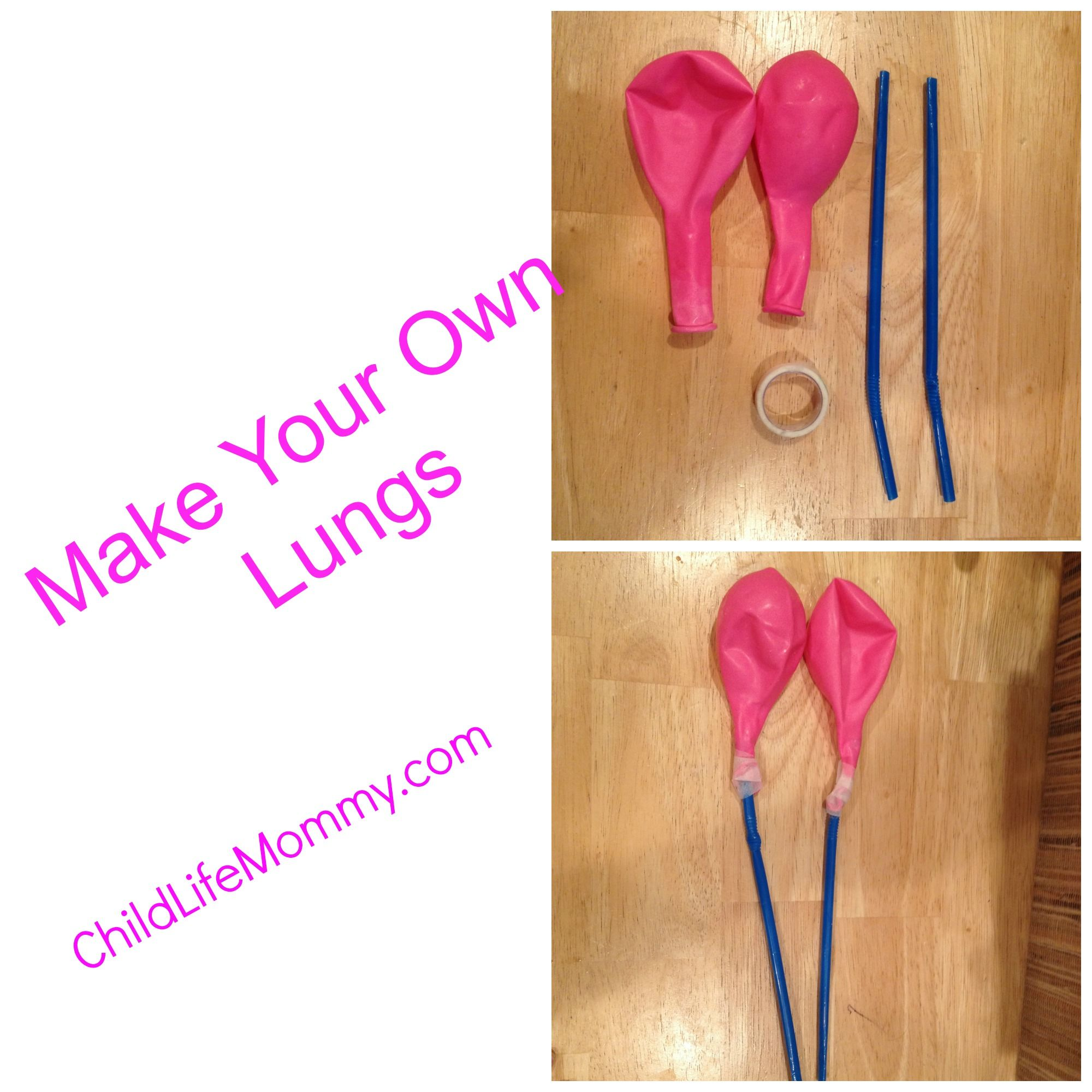 Diy Lungs To Make To Help Children With Asthma Cystic Fibrosis Or