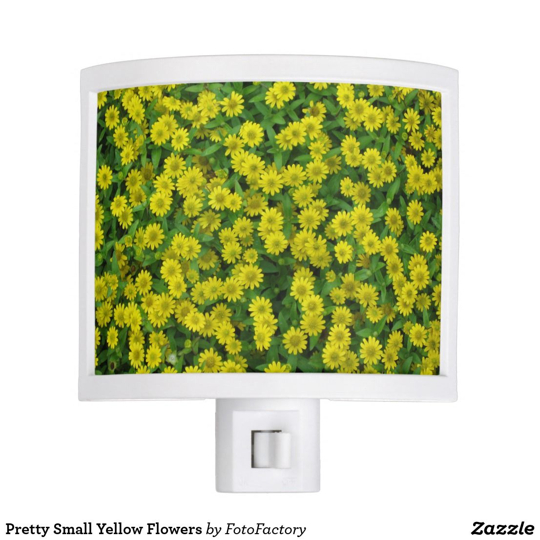 Pretty Small Yellow Flowers Night Light Flowers And Foliage