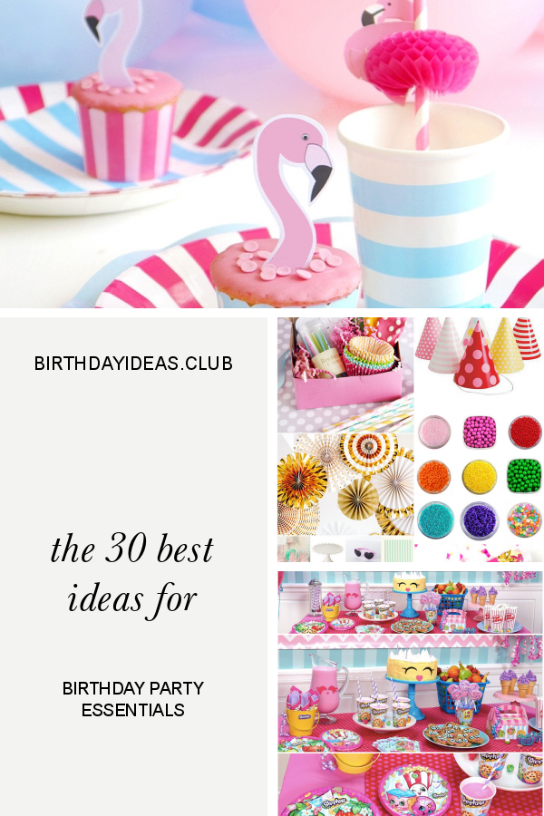 The 30 Best Ideas For Birthday Party Essentials Birthday Party Essentials Garden Party Birthday Cars Birthday Party Disney