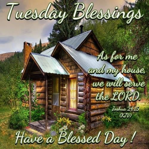 Tuesday Blessings Day Good Morning Tuesday Tuesday Quotes Tuesday Blessings Hello