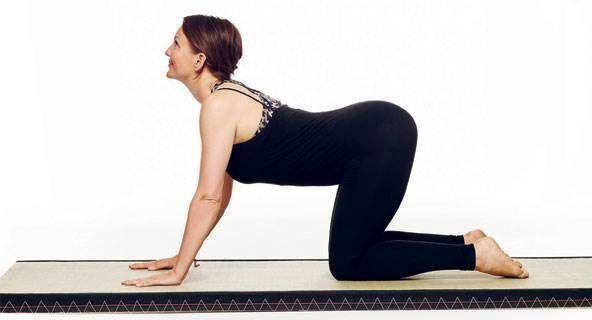 Cat/cow yoga sund mave   Yogaøvelser, Yoga, Træningsøvelser