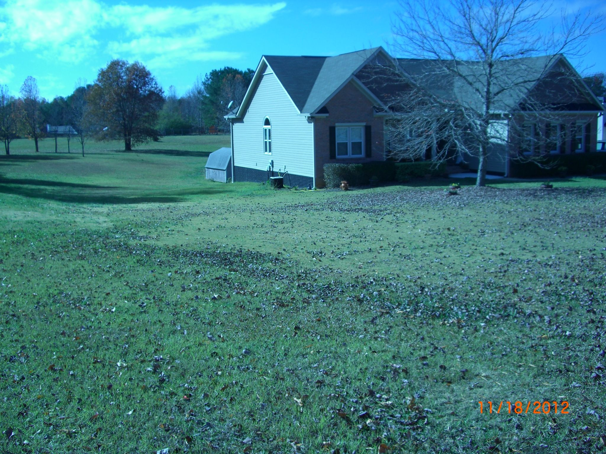 This is the opposite side of the front yard showing the side yard and into the back yard. This view shows how the yard slopes down from the street to behind the house and the back yard slopes towards the house.