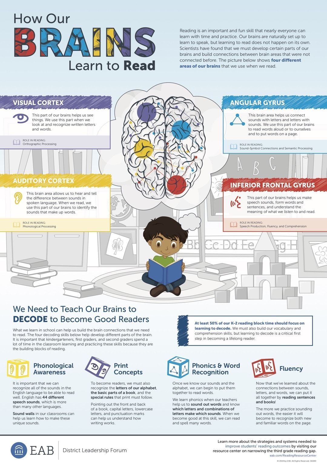 How To Help Our Brains Learn To Read Infographic Brain Learning Learn To Read Reading Resources
