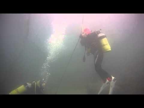 伊豆、初島、獅子浜でダイビングのライセンスを取得する
