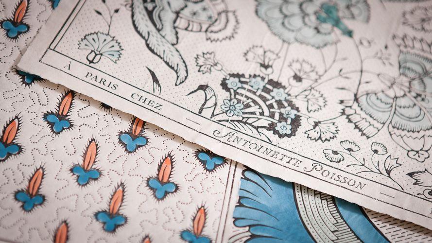 antoinette poisson dominotier motif dessin papier peint