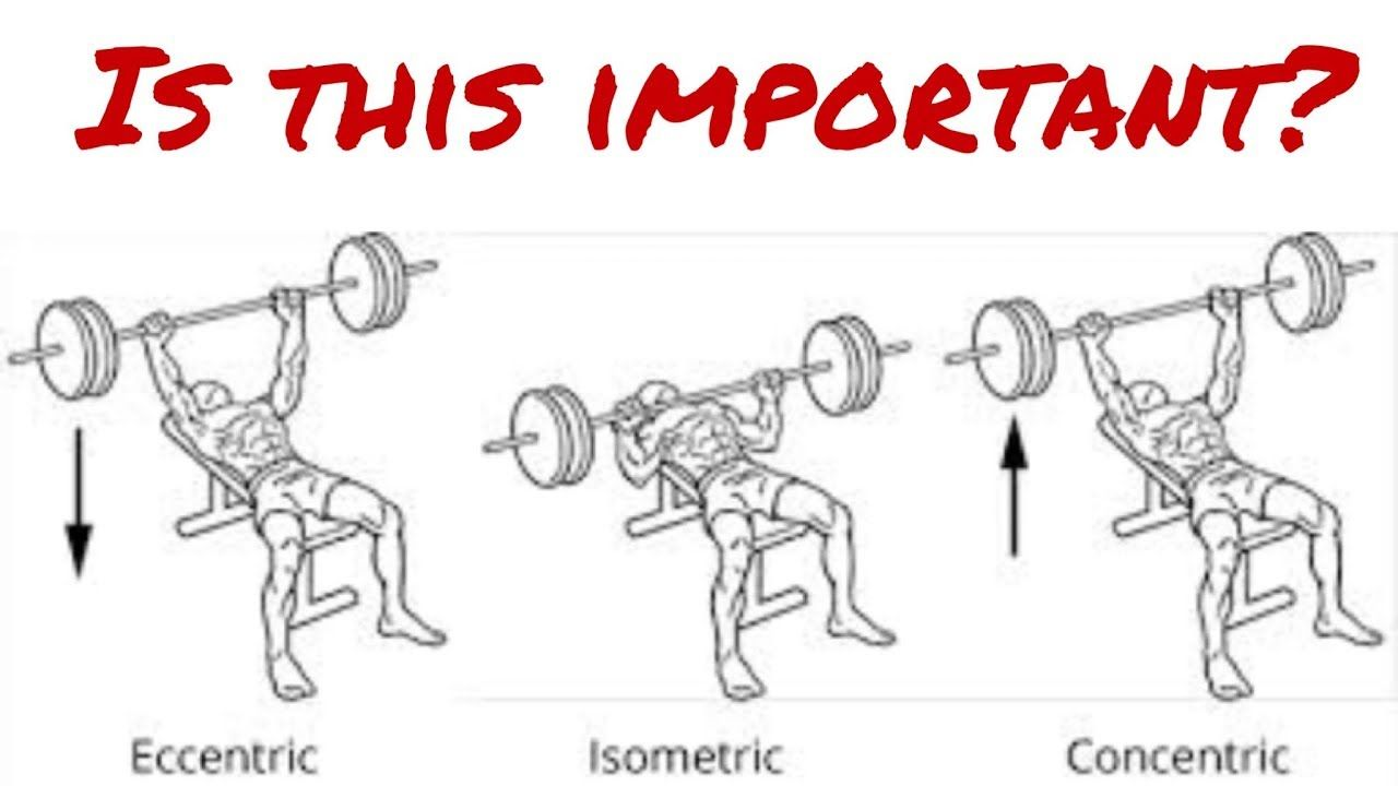 Image result | Eccentric & Concentric movements | Pinterest | Eccentric