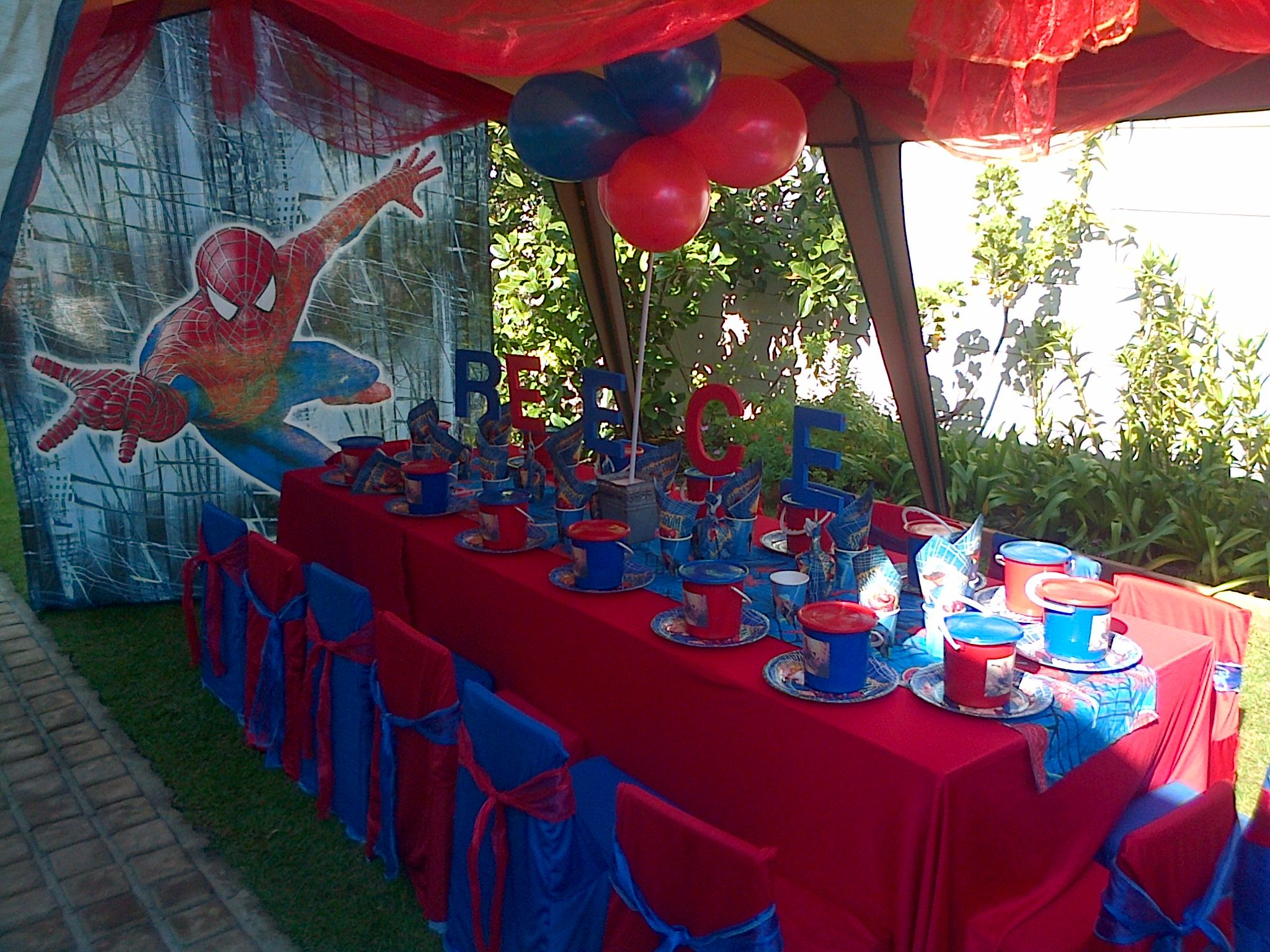Decoration Anniversaire Theme Spiderman Spiderman Theme Kids Themed Parties Themes For Boys