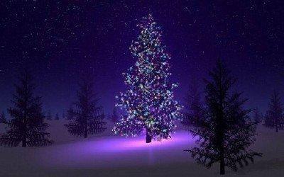 Natale Immagini Hd.Pin Sfondi Capodanno Hd Natale Paesaggi Natalizi On Pinterest Natale Viola Scene Di Natale Immagini Di Natale