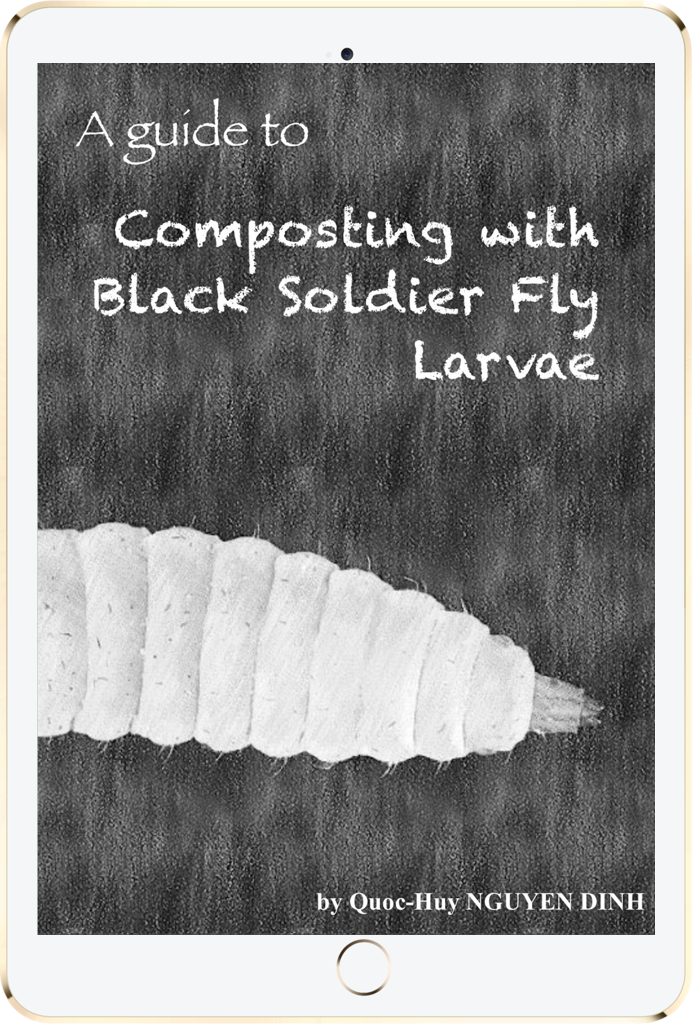 A guide to composting with black soldier fly larvae worm