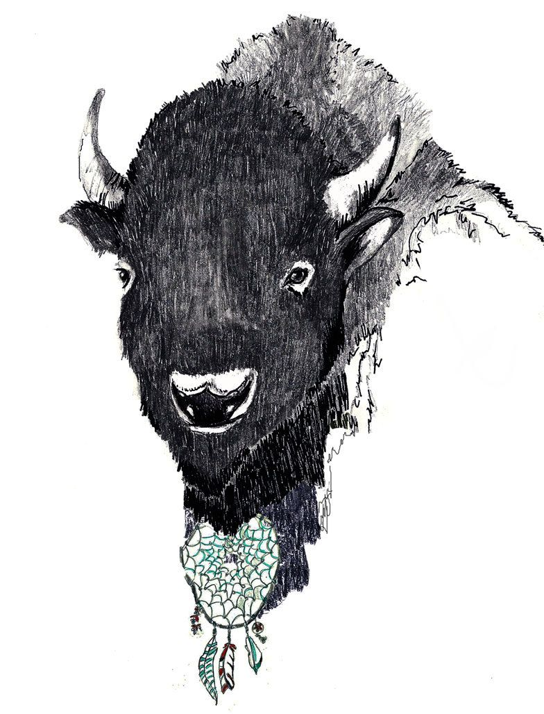 Etsy Art Buffalo Art The Dreamcatcher Art Print By Corelladesign On Etsy