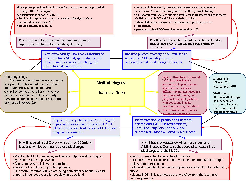nursing diagnosis concept maps | concept map plu pacific lutheran