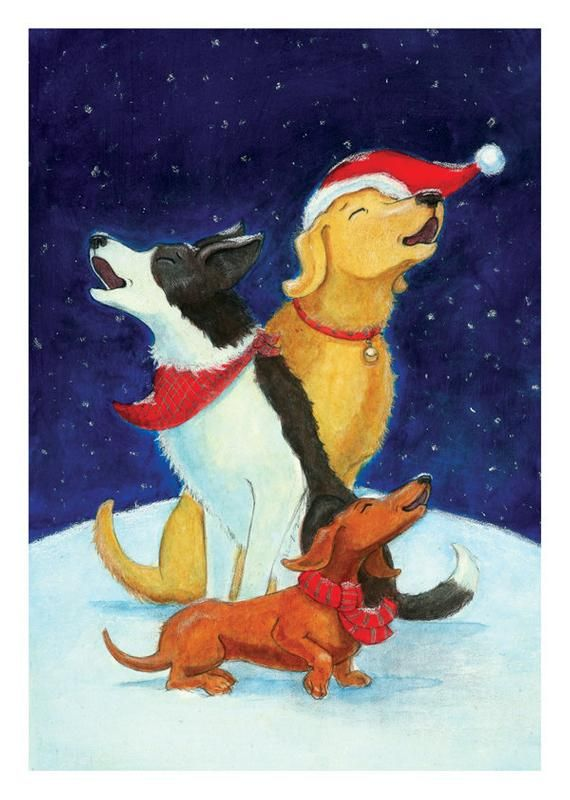 Canine Carolers Dog Themed Holiday Card Pack Of 10 Products