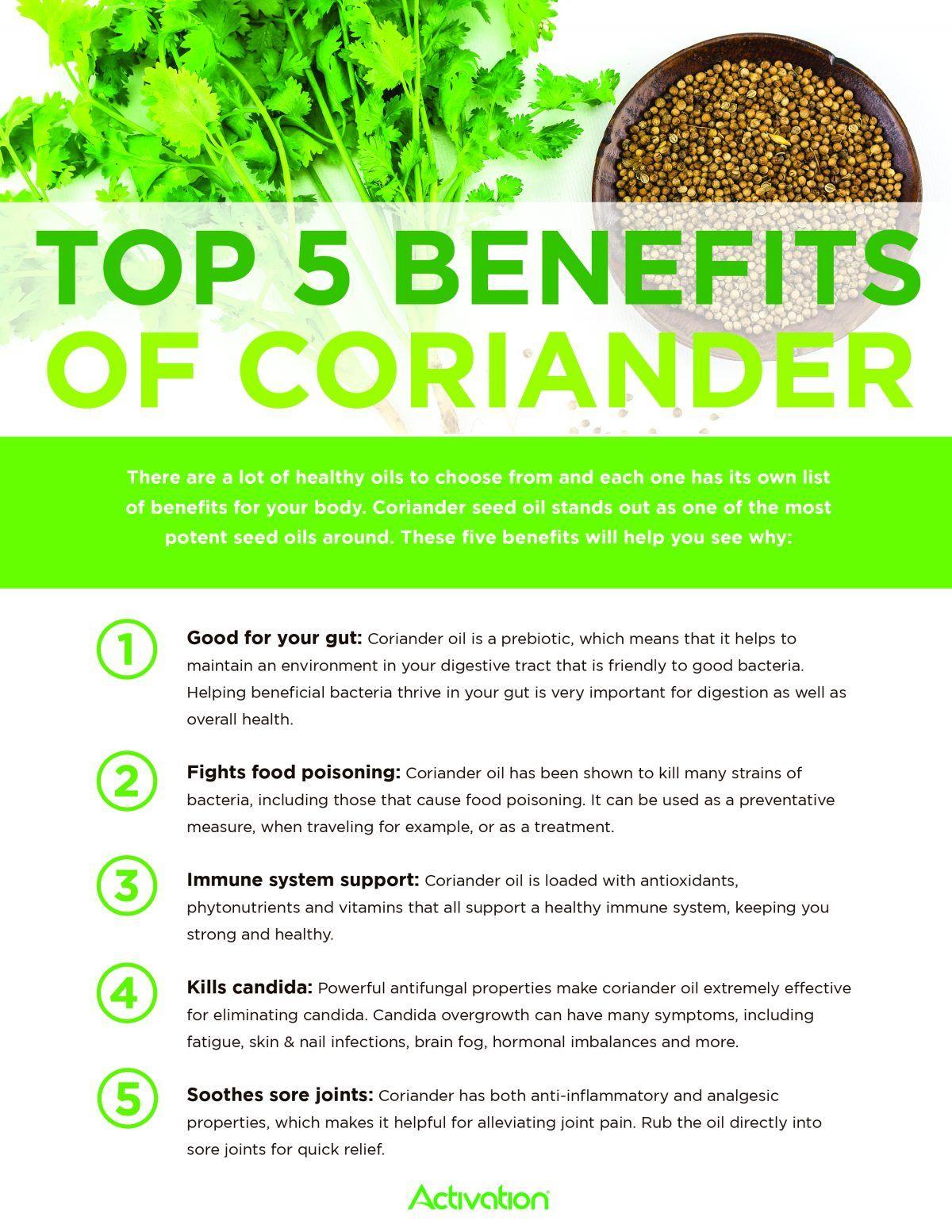 AP_CorianderBenefits012 Coriander oil, Remedies, Home