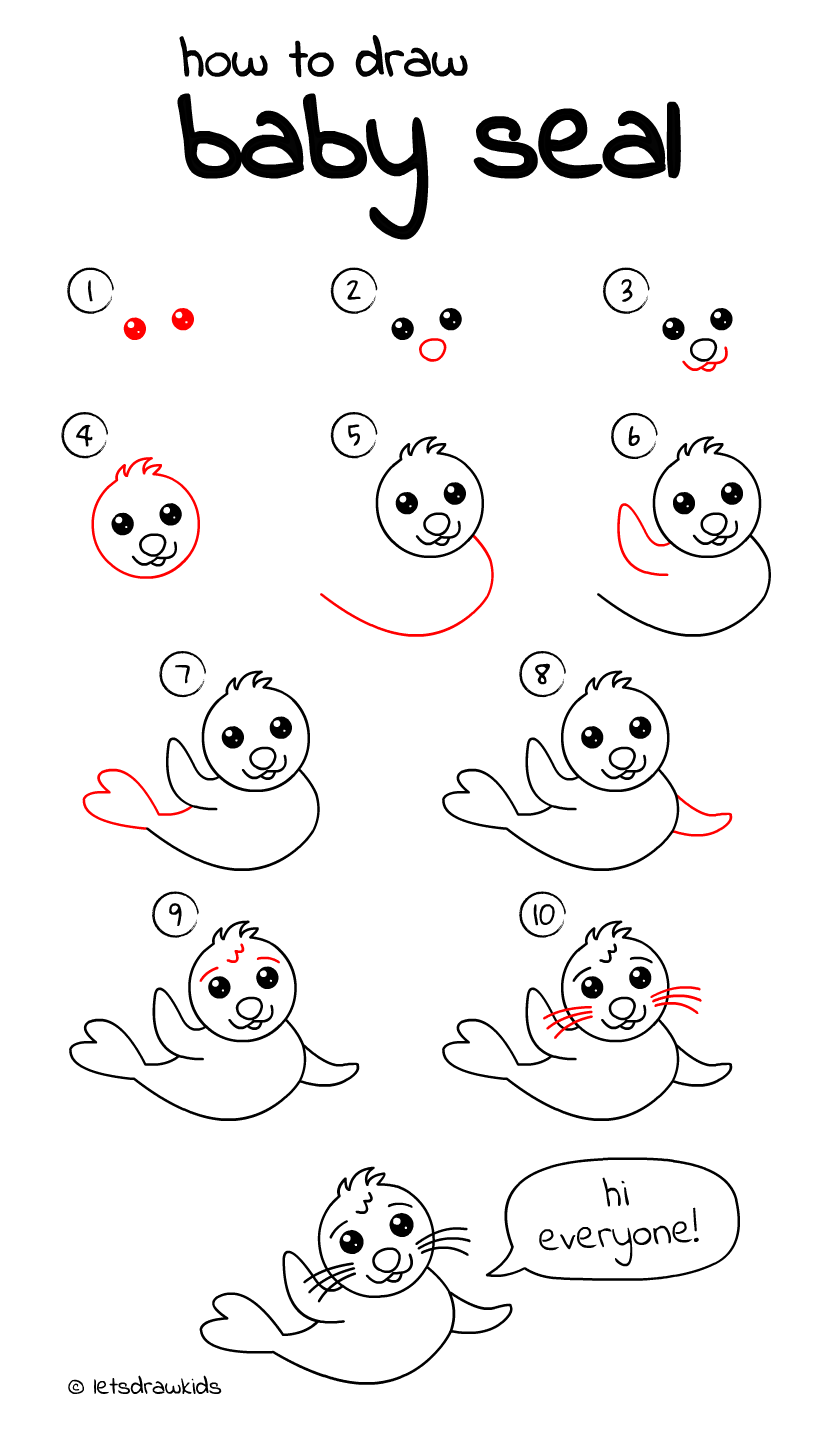 Uncategorized How To Draw A Seal Step By Step how to draw baby seal easy drawing step by perfect for kids
