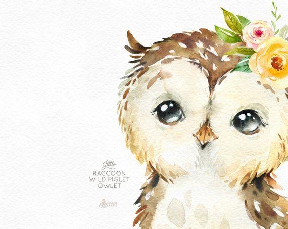 Little Raccoon Wild Pig Owlet. Watercolor animals clipart, woodland, forest, flowers, kids, cute, nursery art, nature, realistic, friends