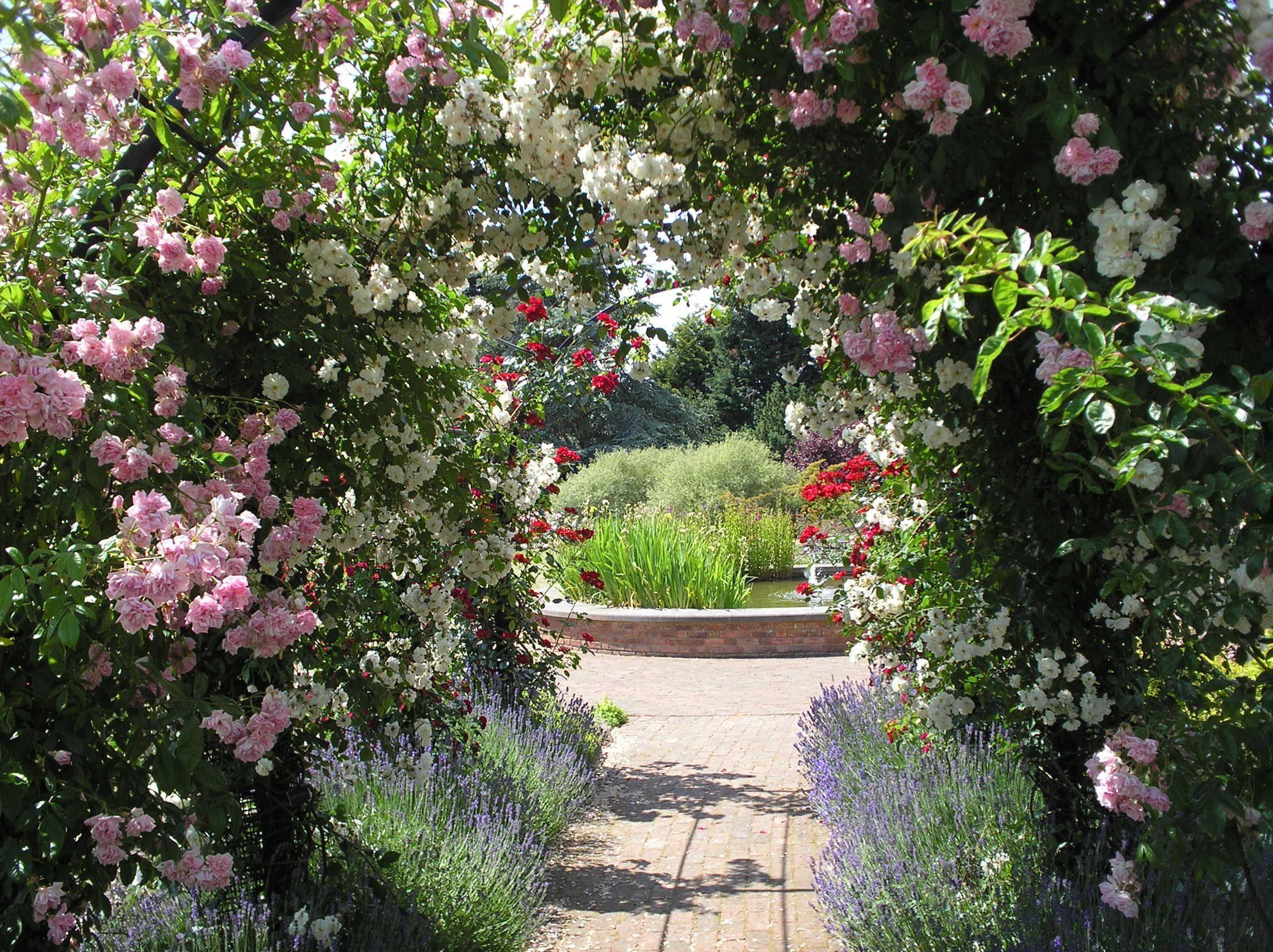Garden arches u pergolas arches and pergolas are popular garden
