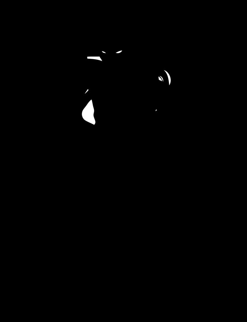 Ninja Shadow Afbeeldingen Ninja Verjaardag