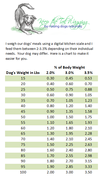 Raw Food Diet For Dogs For Beginners Keep The Tail Wagging Raw Feeding Dog Supplements And Raisi Raw Feeding For Dogs Raw Dog Food Diet Raw Dog Food Recipes