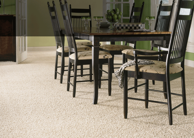 Chesapeake flooring is one of our distributors for our carpet options! Click the link to see your options!