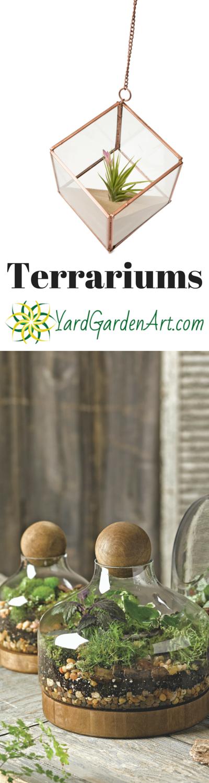 Terrariums are the perfect tabletop garden!