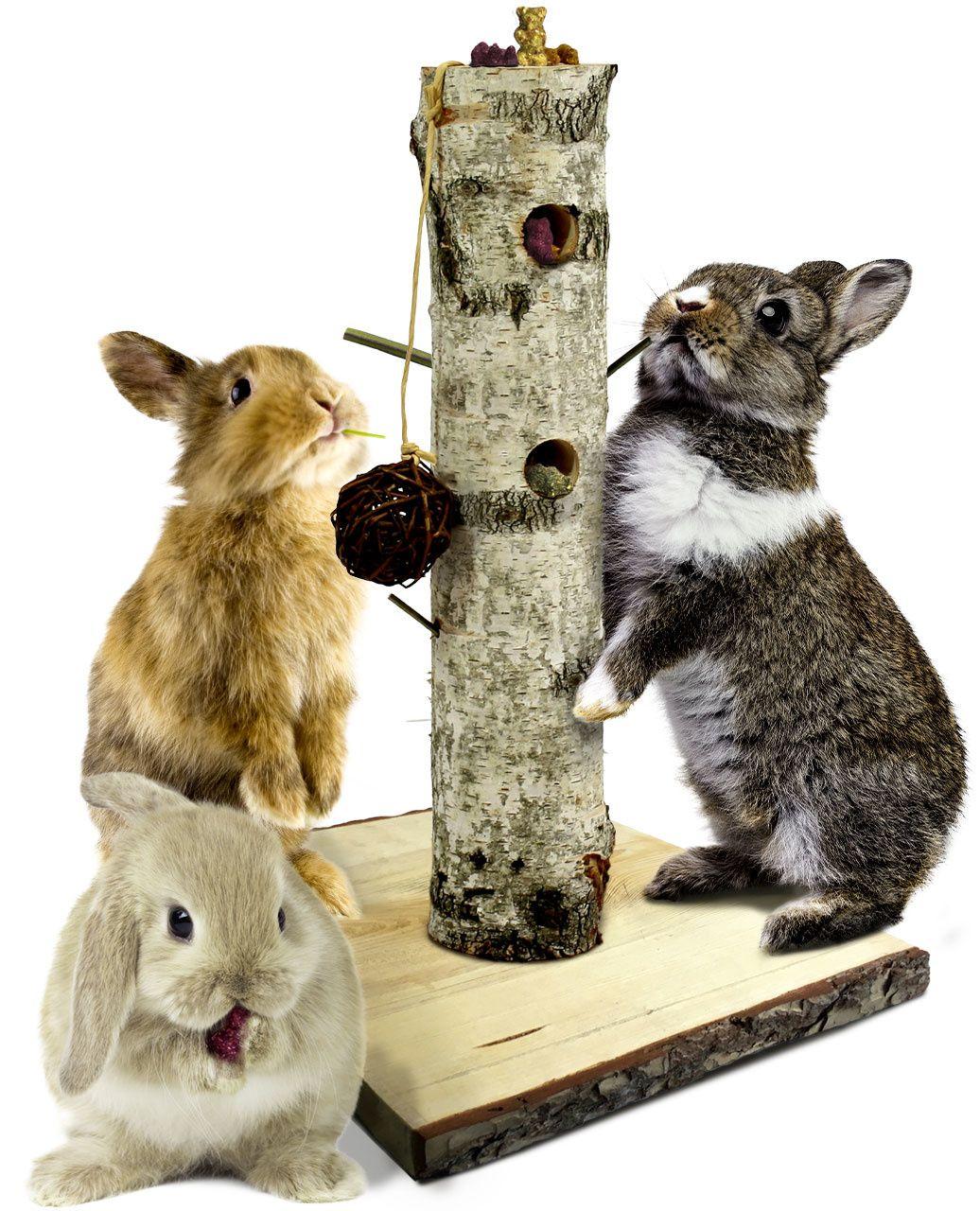 Speelgoed voor knaagdieren & konijnen | DRD Knaagdierwinkel