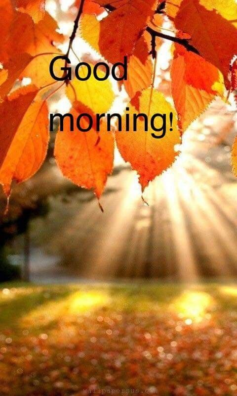 Pin By Valerie H On Fall Fantasies Morning Pictures Good Morning Beautiful Pictures Good Morning Images